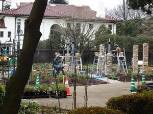 港の見える丘公園の緑化工事0002.jpg