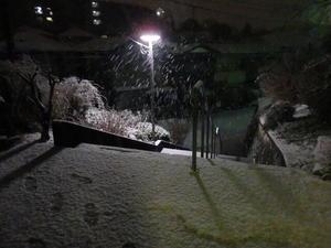 鶴見床屋BSハウス 雪景色.jpg