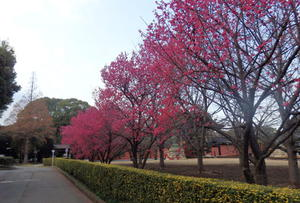 Turumi Soujiji BS-house0002.jpg